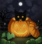 Pumpkin Cat 2020