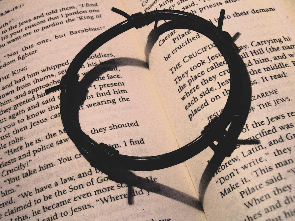 Heart from the crown of thorns by verydullandboring
