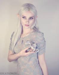 Elf and Dragon