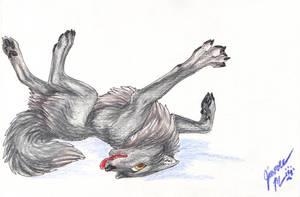 Random Wolf by Jianre-M