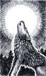 Random Howling Wolf