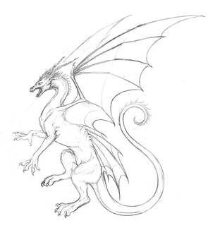'Butterfly' Dragon Sketch