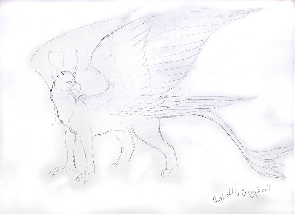 Sketch Request - Butterfly Gryphon by Jianre-M
