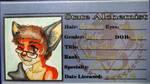 Alchemist Fox-Boy