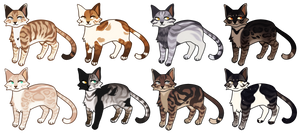 [ adopts ] OPEN