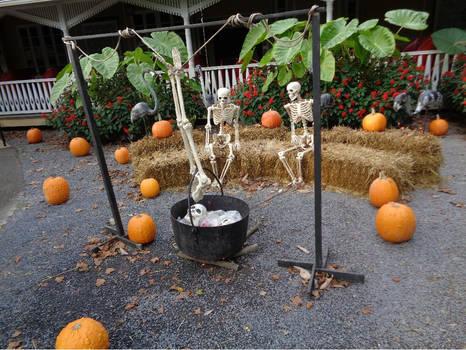 Bone stew anyone?