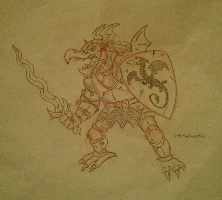 D and D Dragonborn Fighter by SteveLeCouilliard