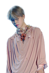 BTS Jimin Png / jimin Transparent background