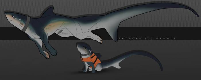 Shark dog design : Thresher