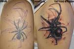 Spider-cover by Pedi