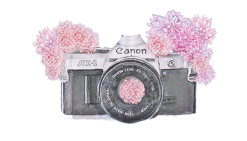 Ediciones photoscape brushes de camaras for Camere dwg