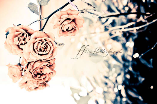 Pale Rose Garden