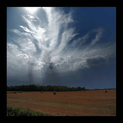 Prairie Angel by bluenose158