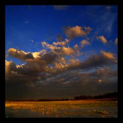 Sunny Breaks by bluenose158