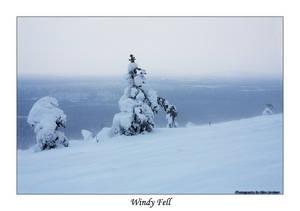 Windy Fell