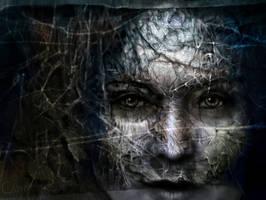 Sense of vision by Daywish