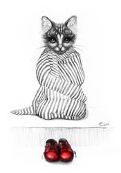 Tabby and the red shoes by Daywish