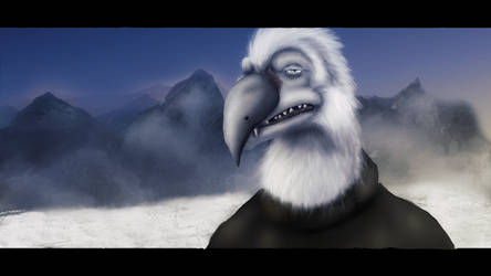 TDC-OC: The Snow Bird
