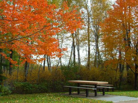 Autumn's Table