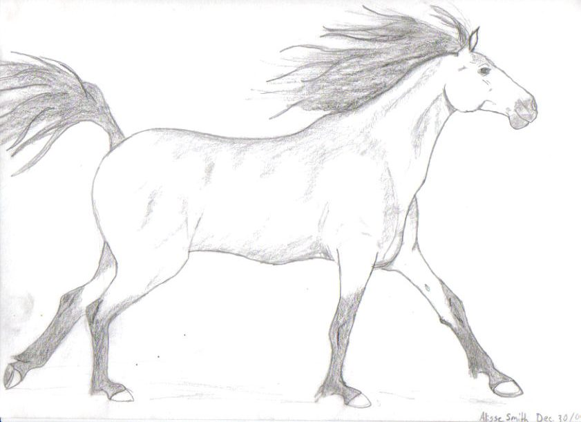 Running horse drawing easy - photo#7