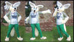 Fennec Fox Partial by ritishique