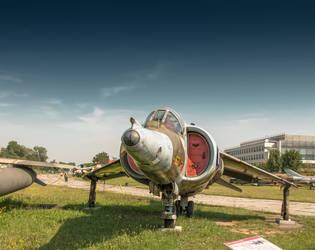 Harrier by kryminalistycy-STOCK