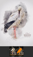 Stork - Watercolor Artist Action for Photoshop