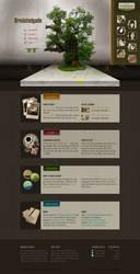 Bredstedgade Dorm: Homepage Mock-up by instantsoul