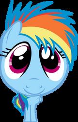 Fisheye Lens Rainbow Dash