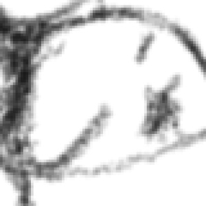 Lotomoedis's Profile Picture