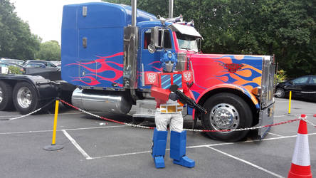 Prime meets Prime