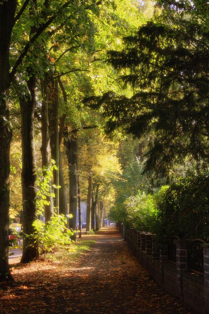 Bremen's sidewalk by dmakreshanski