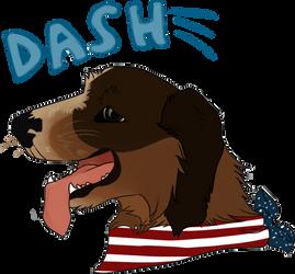 DASHIE !