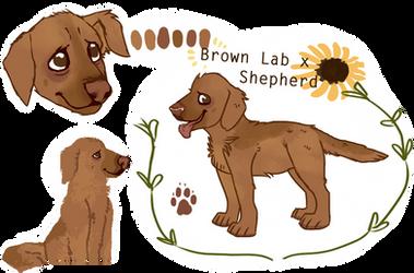 Lab Custom