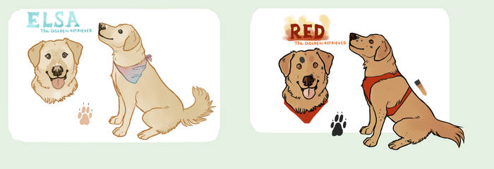 Dog Adoptables