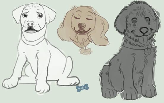 Puppy sketches