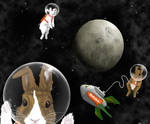 Bunnies in Space by LeeAnneKortus