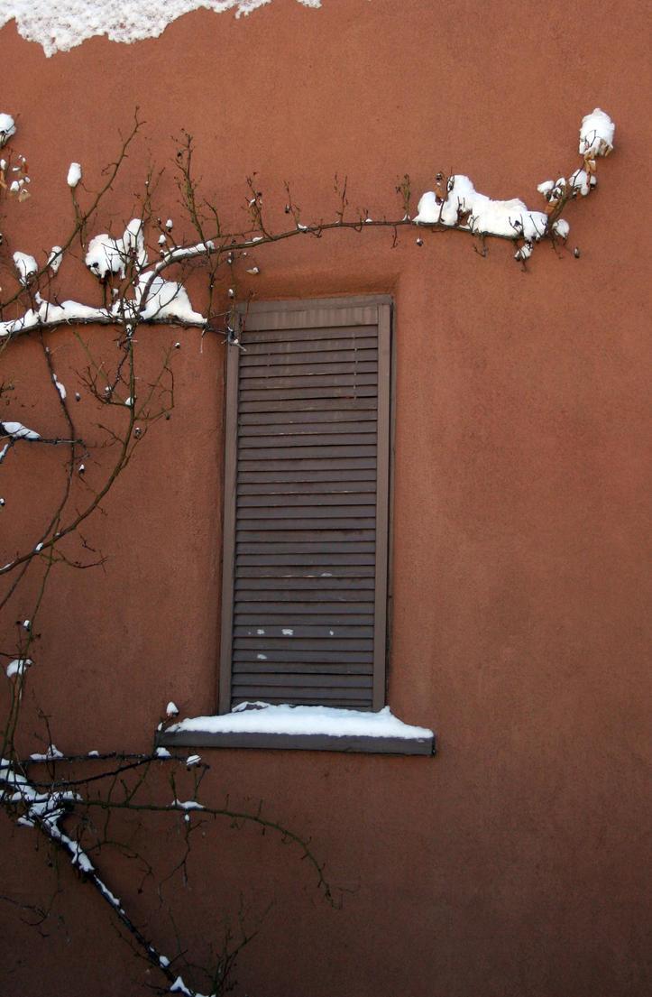 Snowy Window by LeeAnneKortus