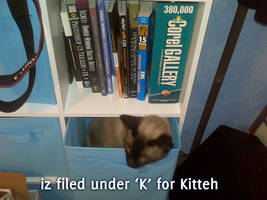 File under K by LeeAnneKortus