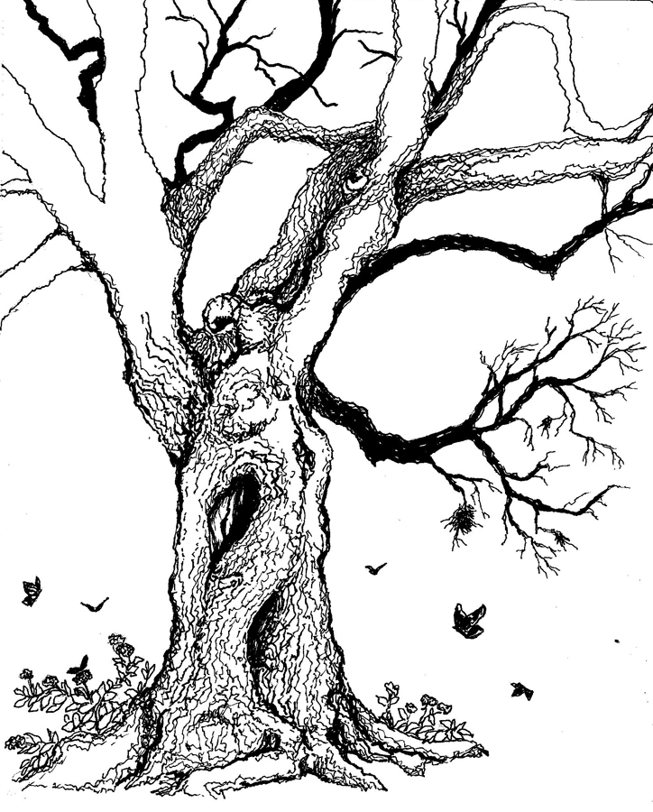 Line Art Of Trees : Old tree with hollows by leeannekortus on deviantart