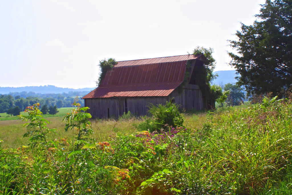 Old Barn by LeeAnneKortus