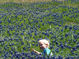 in the bluebonnets by LeeAnneKortus