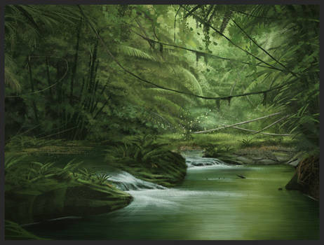 Inside jungle