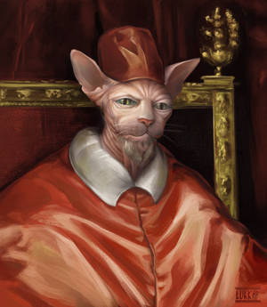 Kitty pope