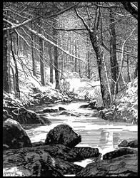 Winter in Sherwood Forest