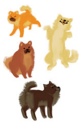 5 minute chows by Pope-Leo