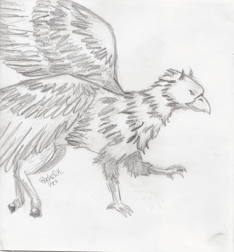 coloring pages buckbeak - photo#29