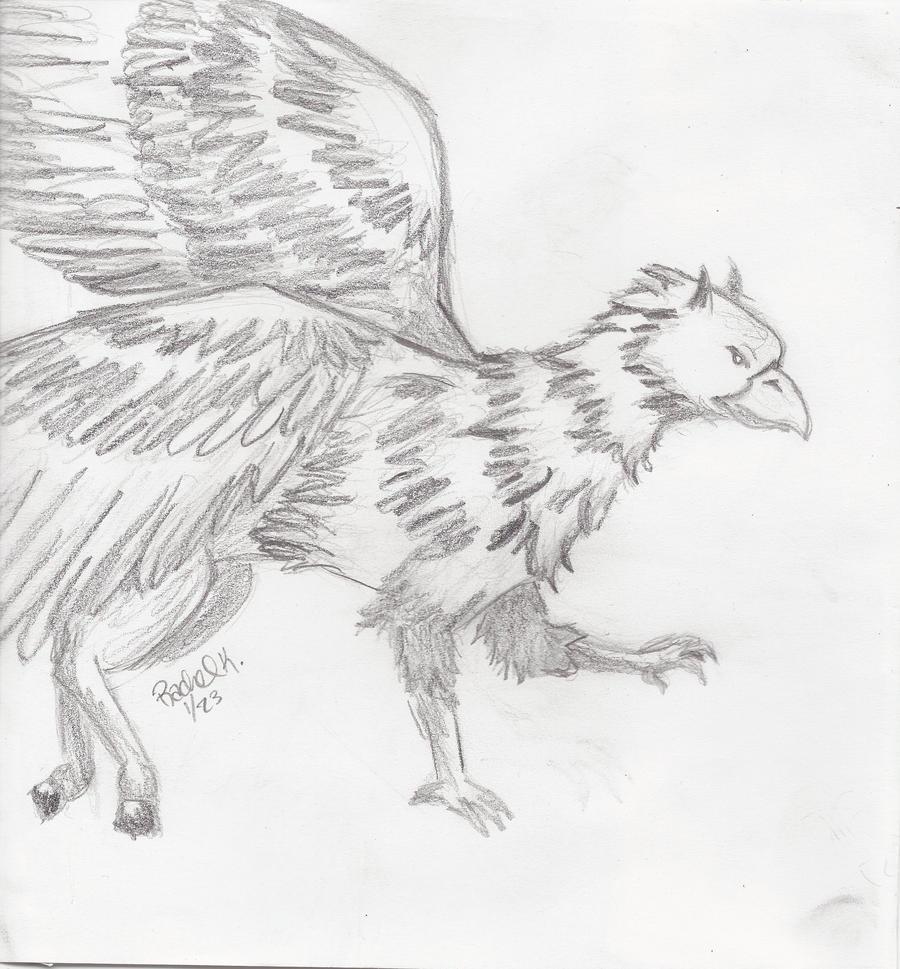 buckbeak coloring pages - photo#22