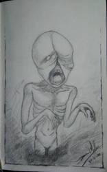New Sketchbook