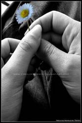 Little Flower in Her Hand